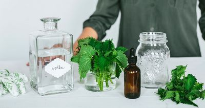The Process of Making Tinctures